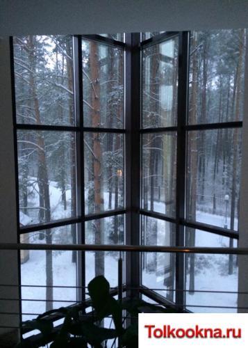Зимние сады: фото 14