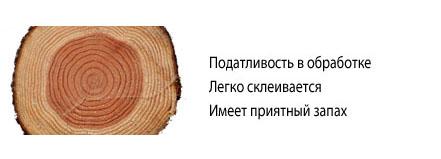 srez-sosny